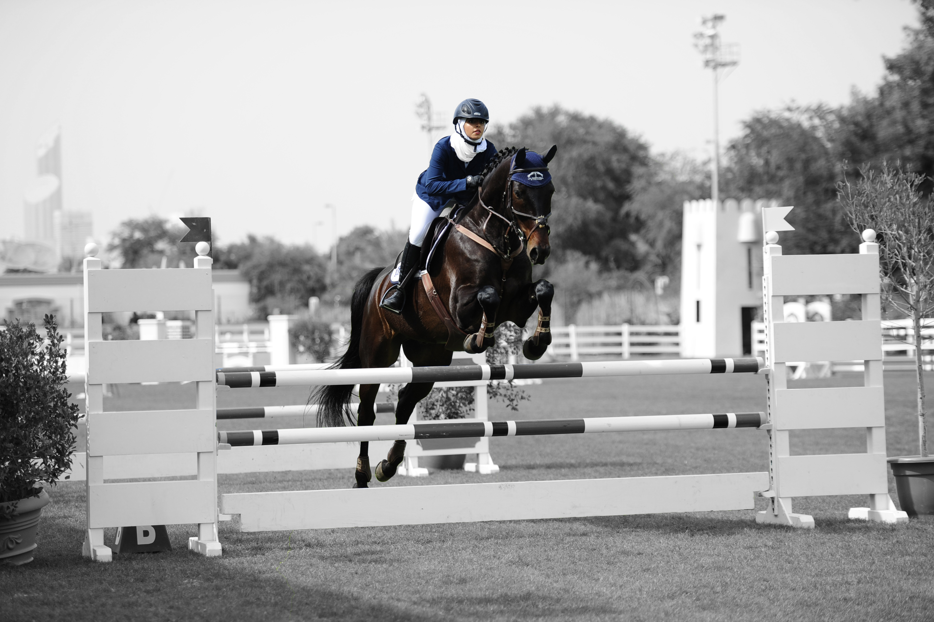 7TH FBMA INTERNATIONAL SHOW JUMPING CUP